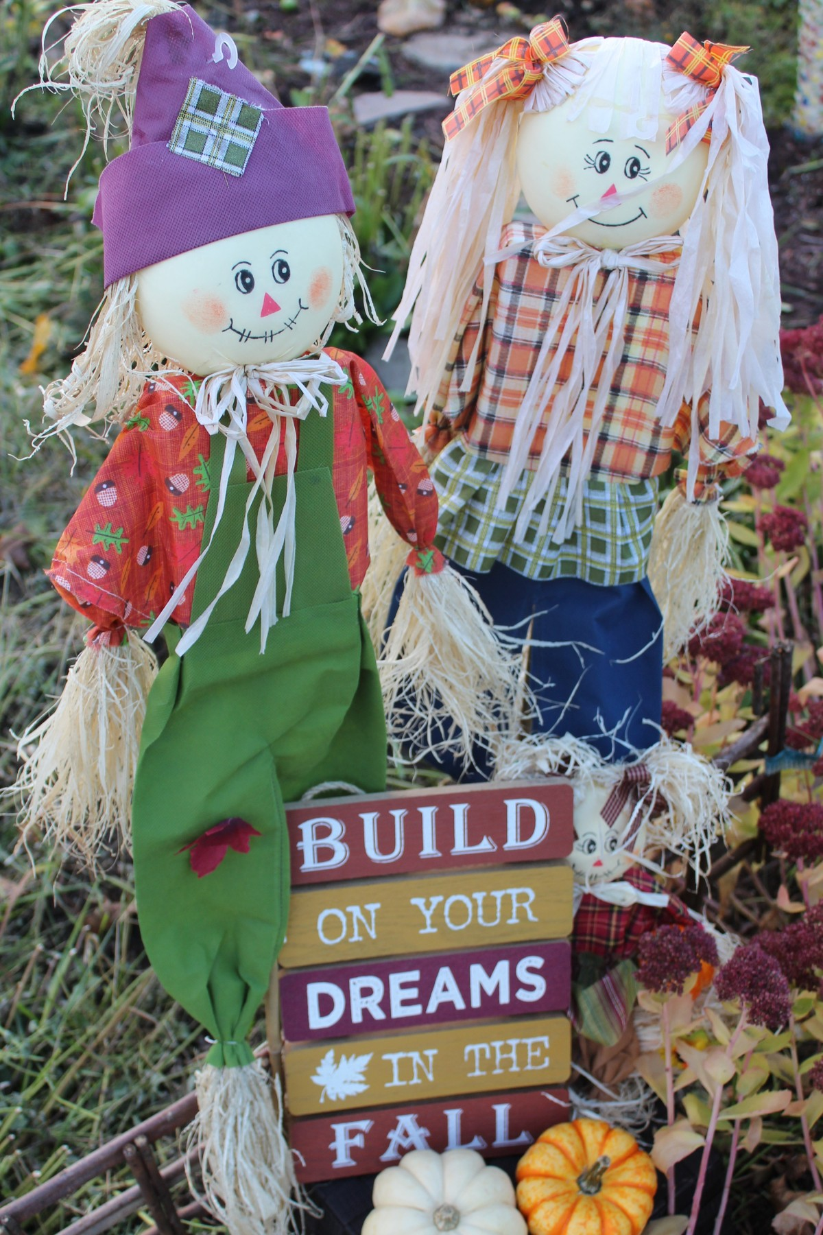Build Your Dreams In TheFall
