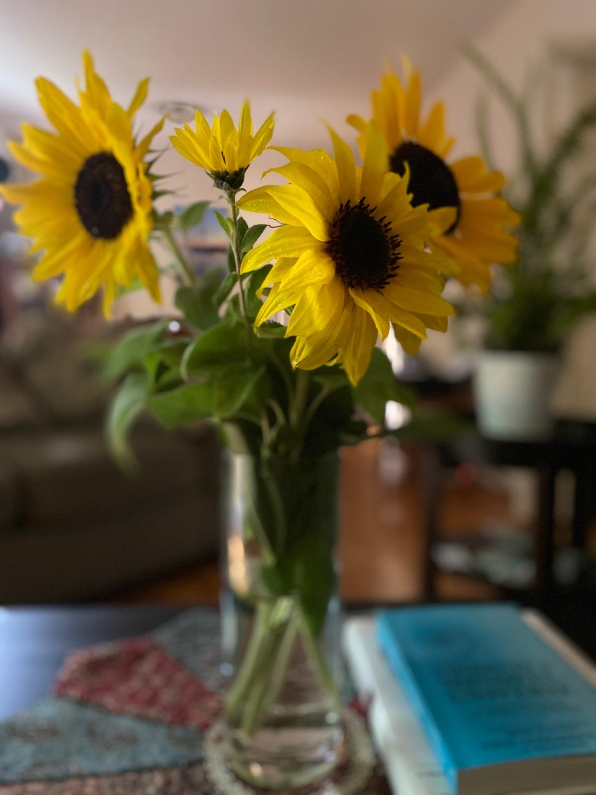 An Invitation For Newness AndRejuvenation